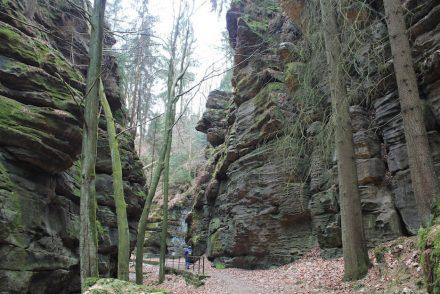 Uttewalder Grund Wanderung zum Uttewalder Felsentor Sächsische Schweiz