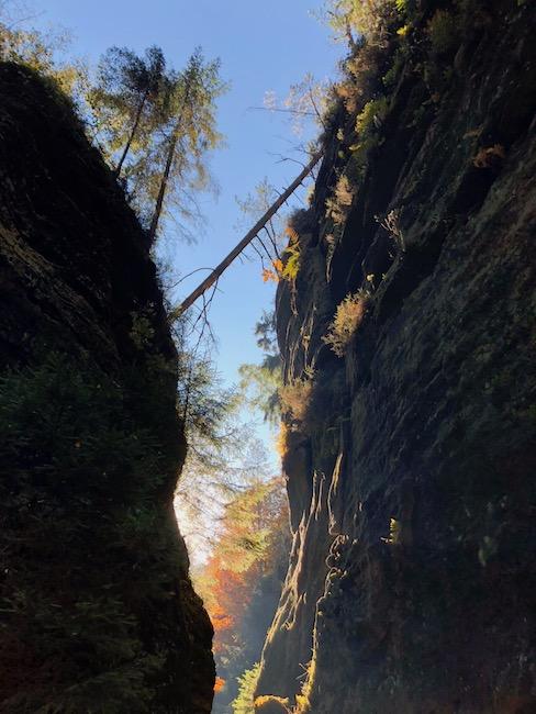 Ausblick Sandsteinfelsen Schwedenlöcher