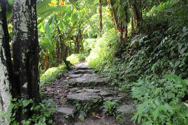 Wanderweg am Wachirathan Wasserfall Doi Inthanon