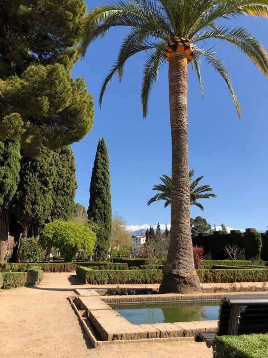 Park Alhambra Palmen Impression