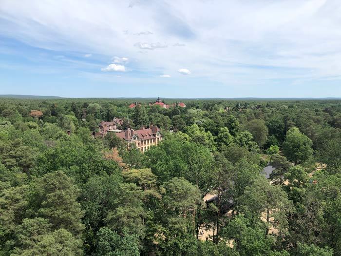 Ausblick vom Aussichtsturm am Baumkronenpfad