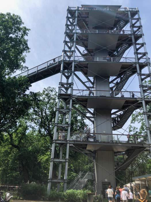 Aussichtsturm am Baumkronenpfad