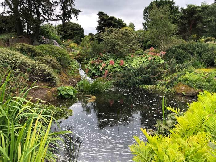 Pflanzenvielfalt im Royal Botanic Garden