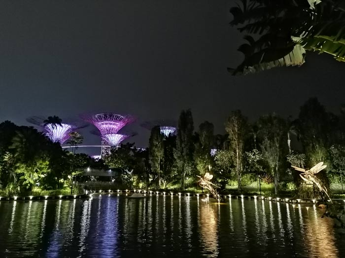 Gardens by the Bay mit den Supertrees bei Nacht