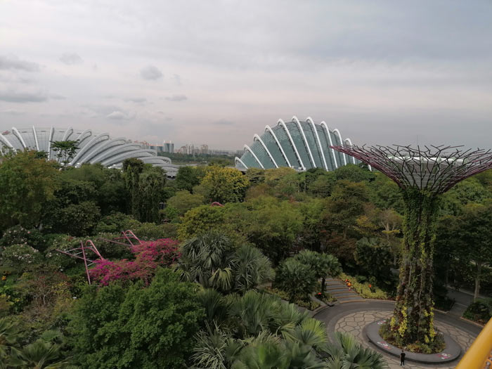 Flower Dome und Cloud Forest in Singapur