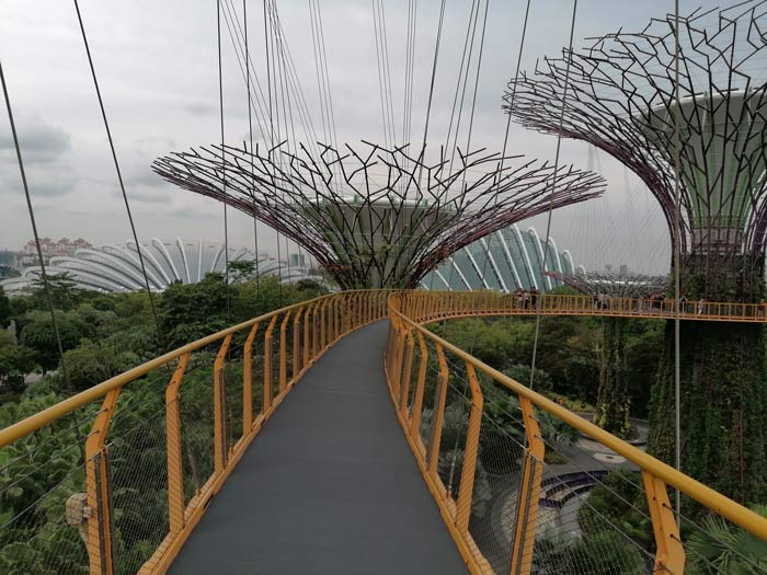 OCBC Skywalk Supertrees