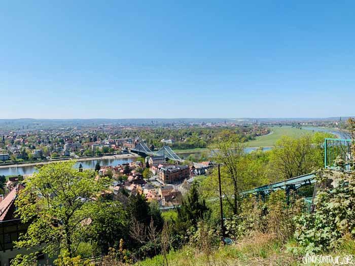 Grandioser Ausblick auf Blaues Wunder, Blasewitz und die Elbwiesen