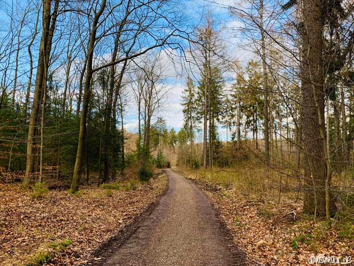 Dresdner Heide Wanderweg