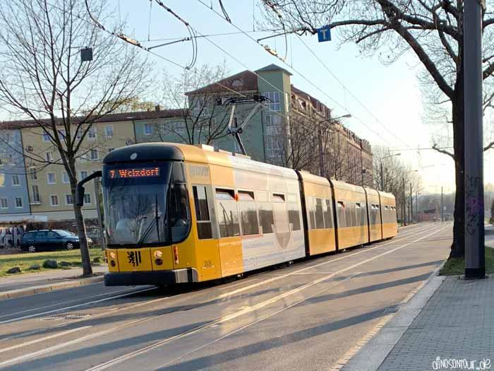 DVB Straßenbahn