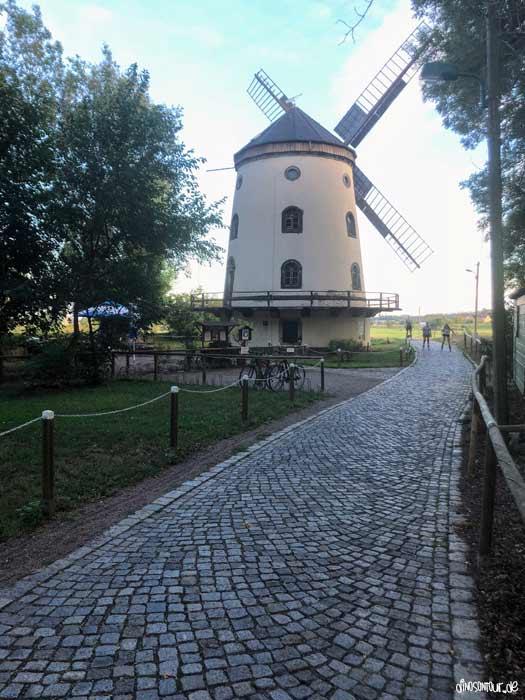 Gohliser Windmühle Biergarten