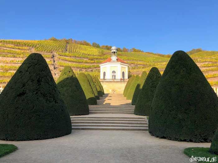 Schloss Wackerbarth Weinhänge