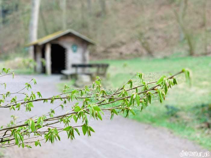 Rastplatz mit Schutzhütte