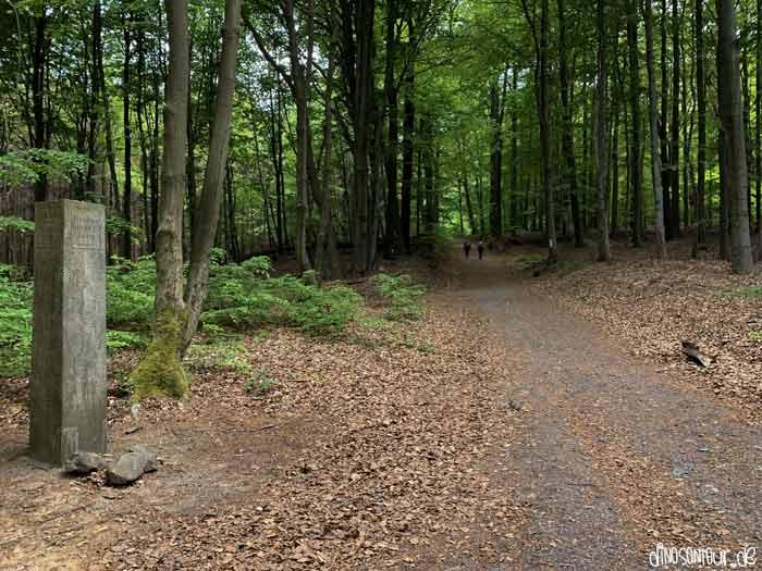 Hinweis im Wald zum Großen Winterberg