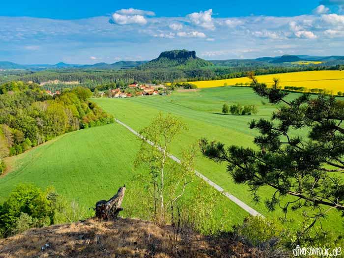 Blick vom Rauenstein Richtung Lilienstein und Weißig