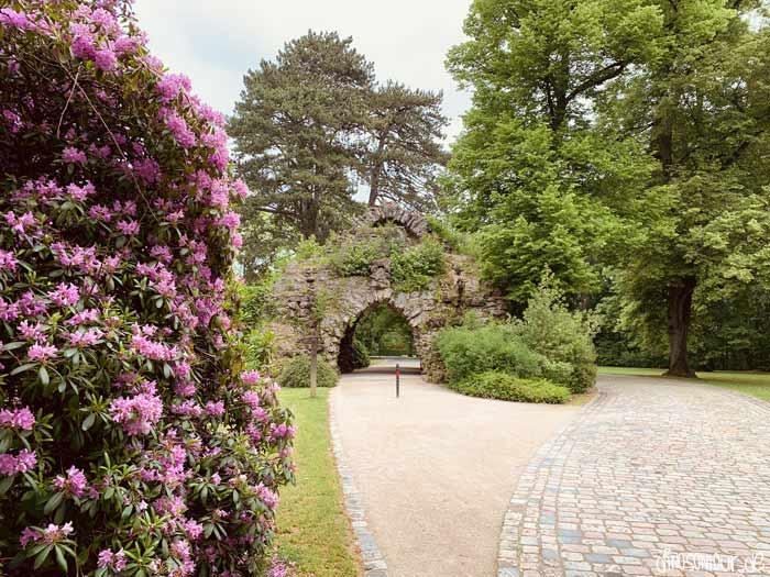 Blumen in der Bayreuther Eremitage