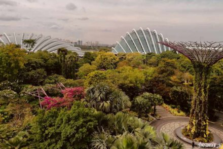 Gardens by the Bay mit Supertree, Flower Dome und Cloud Forest