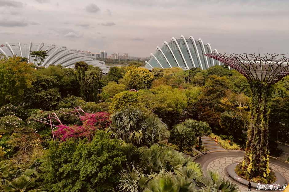 Gardens by the Bay mit Supertree, Flower Dome und Cloud Forest