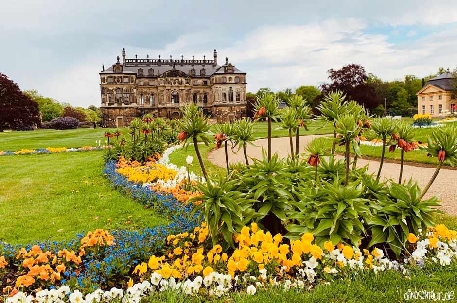 Palais im Großen Garten mit Blumenbeet