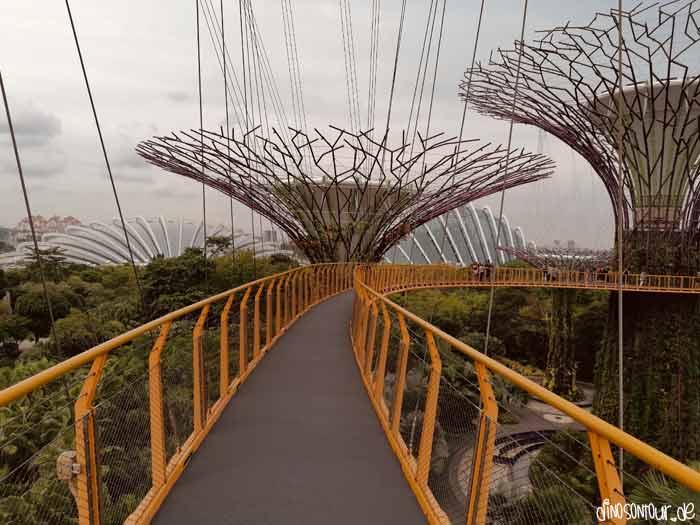 OCBC Skywalk zwischen Supertrees