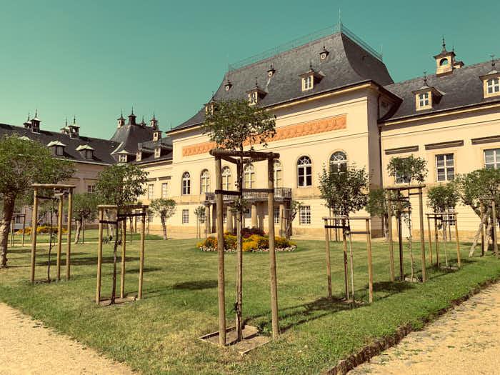 Fliederhof hinter dem Neuen Palais in Schloss Pillnitz