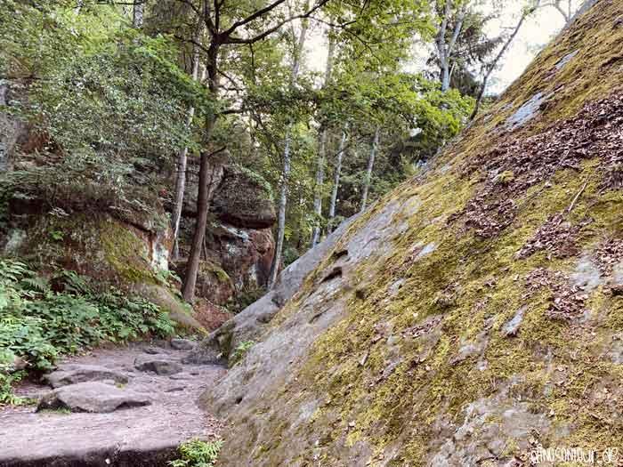 Nordaufstieg Lilienstein