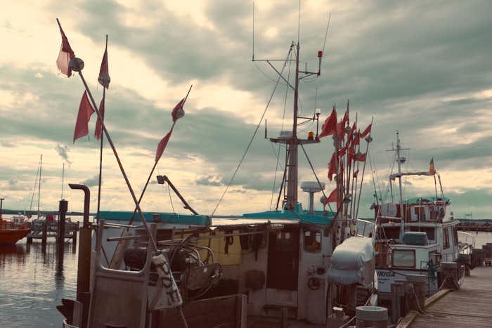 Schiff im Hafen von Poel