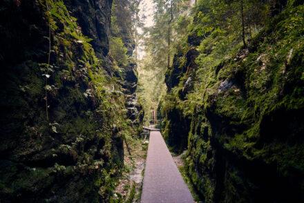 Schwedenlöcher Wanderung