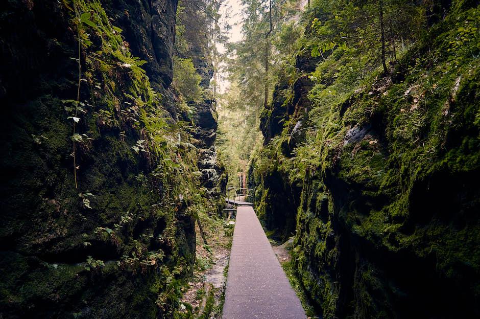 Schwedenlöcher Wanderung – Verschiedene Routen, Highlights & Tipps
