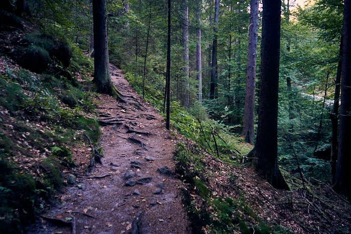 Wanderweg Tiefer Grund