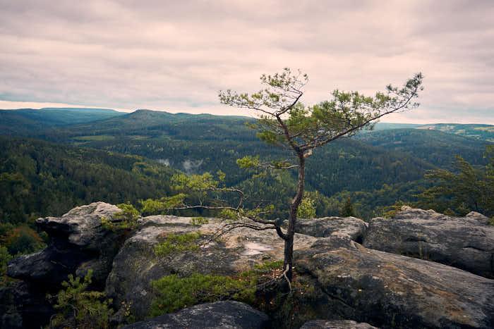 Quirl Aussicht auf die Sächsische Schweiz