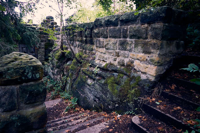 Ruine am Pfaffenstein