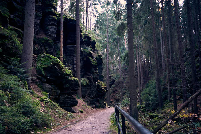 Einstieg Waldweg Uttewalder Grund