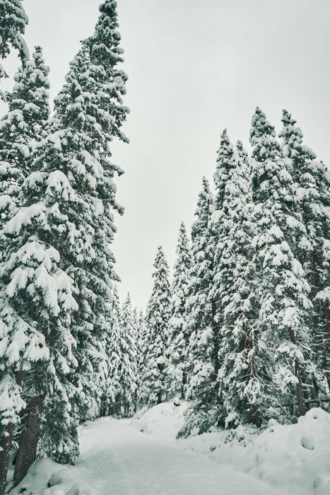 Tauernkarsee Winterwanderung