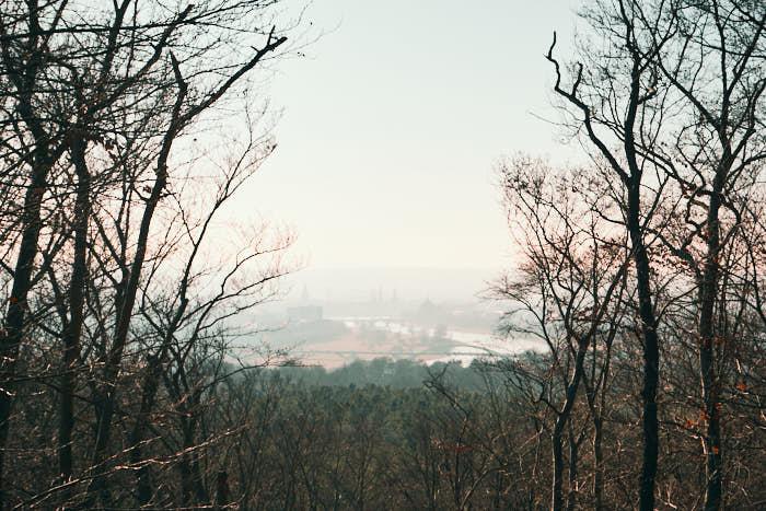 Wolfshügelturm Dresdner Heide