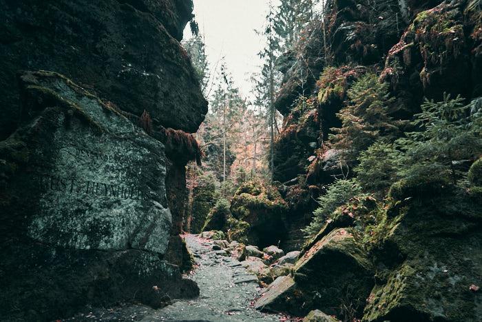 Uttewalder Grund Sächsische Schweiz