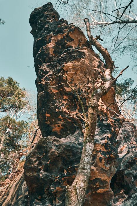 Felsen am Kohlbornstein