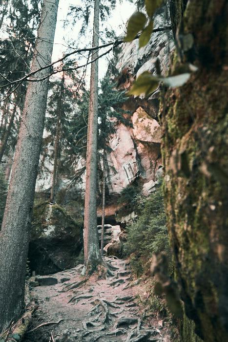 Gautschgrotte Zugang Wanderpfad