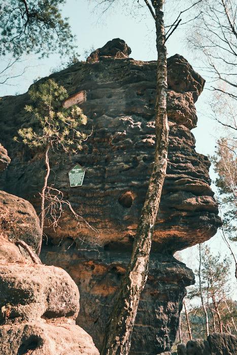 König Albert- Tafel am Kohlbornstein