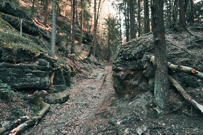 Kohlbornstein Abstieg zur Liethenmühle
