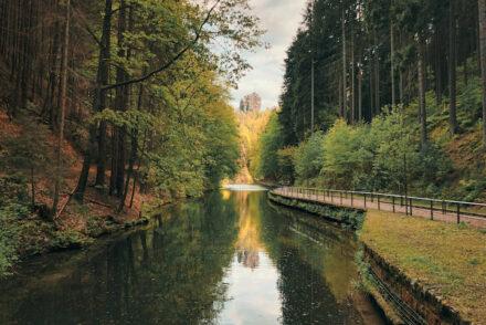 Wolfsschlucht Hockstein Amselsee Wanderung