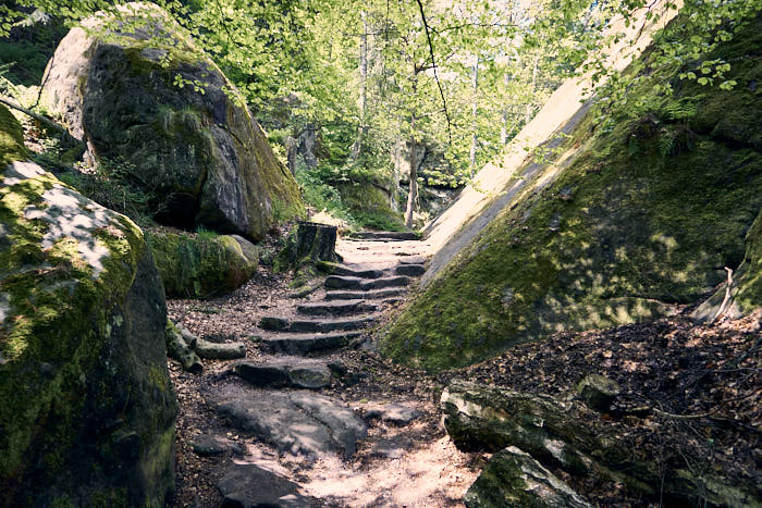 Lilienstein Aufstieg Nordseite