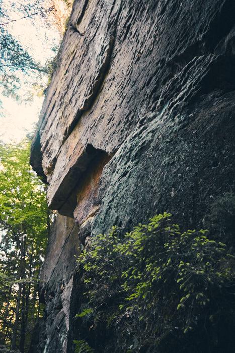Felswand an der Heringshöhle