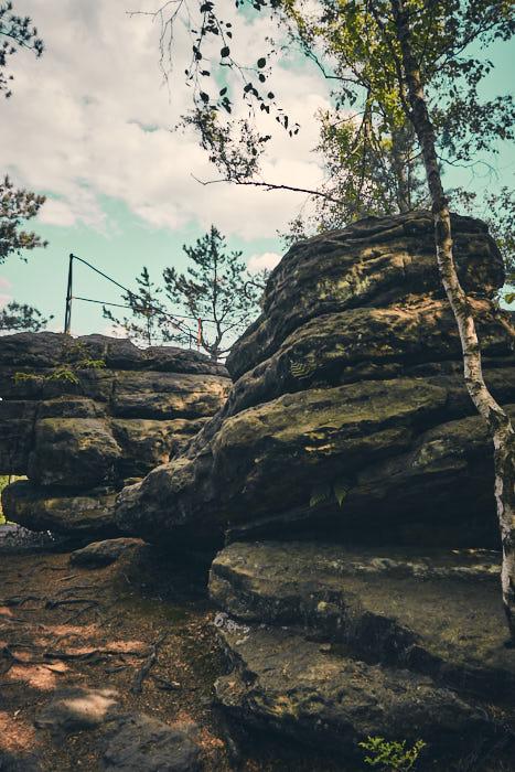 Nachbar Felsen Bielatal