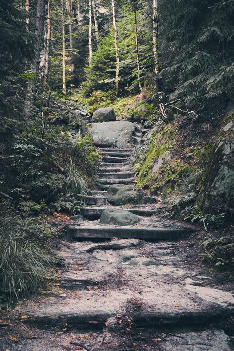 Rotkehlchenstiege erster Abschnitt Stufen